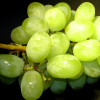 cluster of green grapes